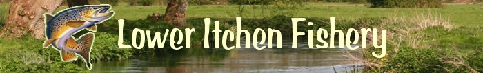 Lower Itchen Fishery Ltd - Fly Fishing
